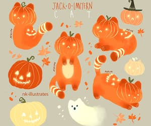 cat, gif, and pumpkin image