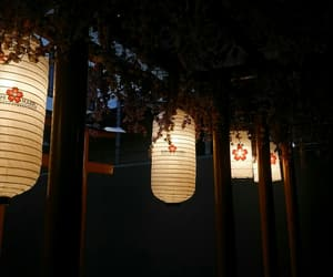 black, japan, and chandelier image