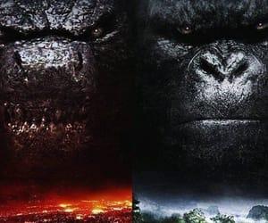 Godzilla, king kong, and michael dougherty image