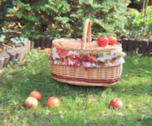 cottagecore, aesthetic, and apple image