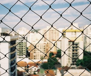 35mm, analog, and brasil image
