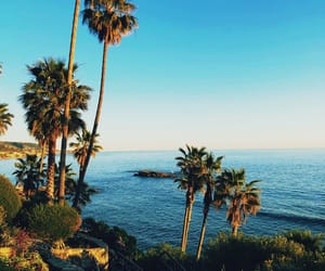beach, beauty, and california image