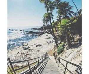 beach, Dream, and Hot image