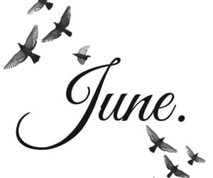 june, quote, and quotes image