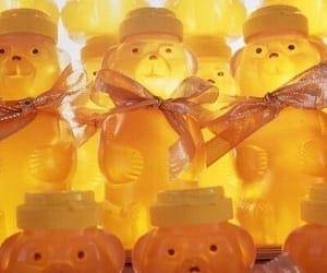 aesthetics, bear, and honey image