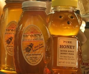 aesthetic, honey, and yellow image