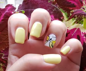 butterfly, like, and nail image