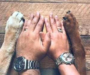 clock, dogs, and hands image