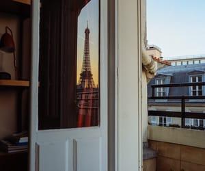 paris, photographie, and tour eiffel image