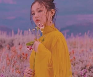 aesthetic, asian, and flower image