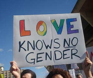 bisexual, lesbian, and pride image