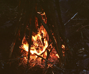fire, campfire, and nature image
