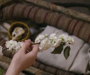 flowers, anne with an e, and aesthetic image