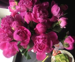 birthday, bright, and pink image