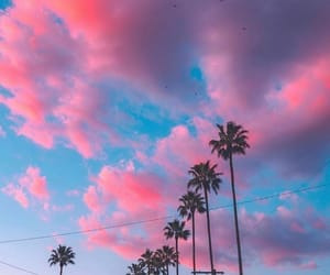 aesthetic, indie, and los angeles image
