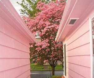 pink, house, and tree image