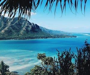background, paradise, and beach image