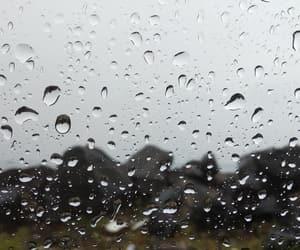 girl, nature, and rain image