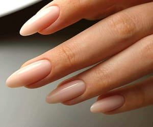 nails, Nude, and manicure image
