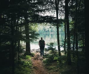adventure, forest, and goals image