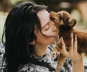 billie eilish, celebrity, and music image