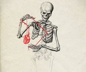 heart, skeleton, and impossible love image