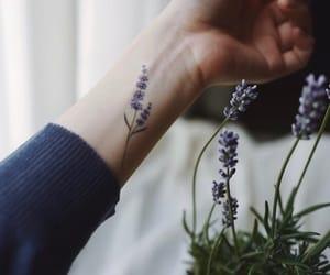 aesthetic, minimalist, and lavender image