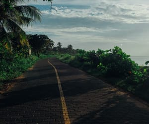 road, nature, and summer image