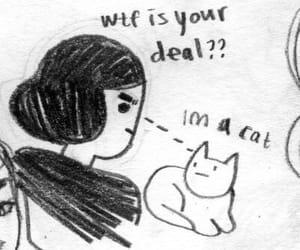 im a cat image