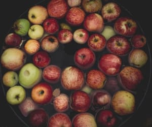 apples and food image