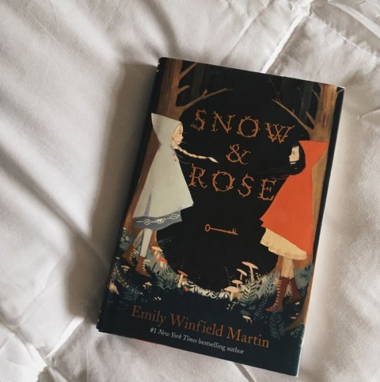 book, fairy tale, and snow and rose image
