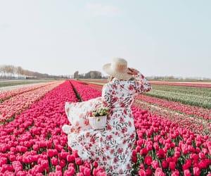 beautiful, dress, and flowers image
