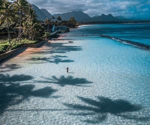beach, beautiful, and hawai image