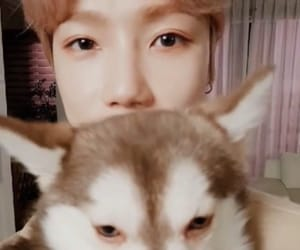 new, the boyz, and choi chanhee image