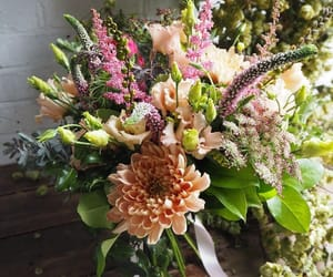 floral, florist, and flowers image