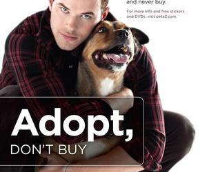 dog, kellan lutz, and peta image