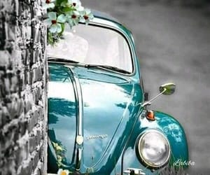 cars, vintage, and sport cars image