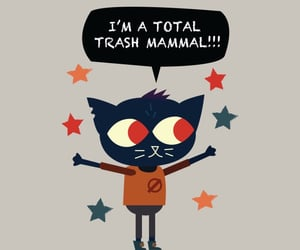 cat, night in the woods, and drunk image
