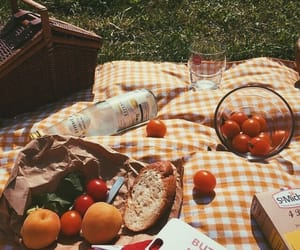 fruit, picnic, and aesthetic image