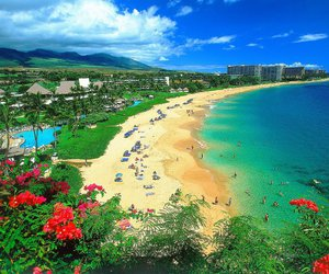 hawaii, beach, and sea image