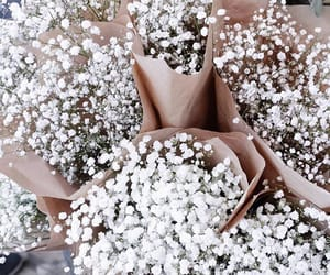 flowers, goals, and simple image