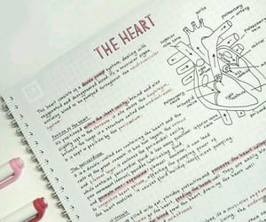 school, heart, and notes image