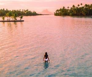 Maldives, pink, and sunset image