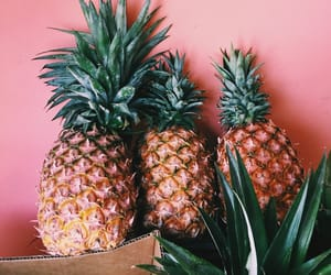 FRUiTS, pineapple, and summer image
