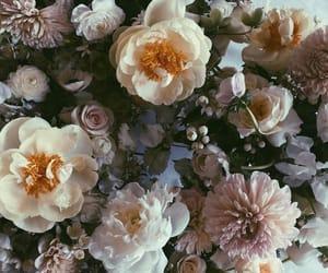 flowers, vintage, and prilaga image