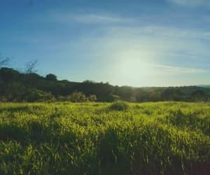 bonito, campo, and sol image