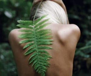 back, green, and nature image