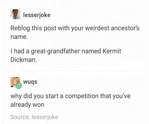 funny, post, and tumblr image