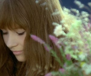 1970s, delicate, and ethereal image