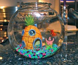 spongebob, patrick, and fish image